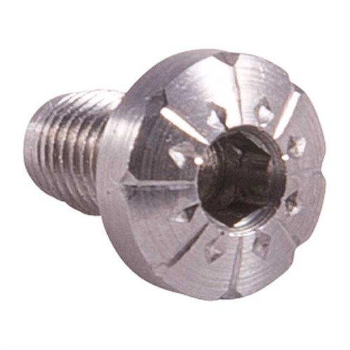 S/S 1911 Engraved Screws